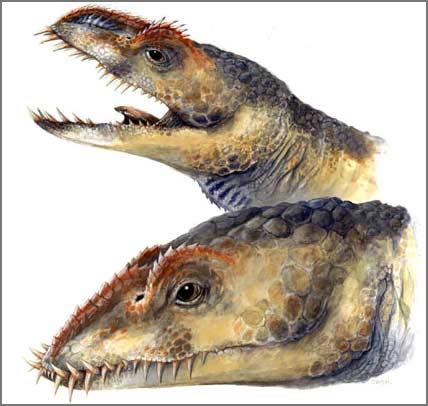 Phát hiện loài bò sát biển mới cùng kỳ khủng long