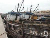 40.000 tàu đánh cá sẽ thành... san hô?