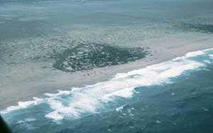 Việt Nam: Cũng cần cảnh giác với sóng thần