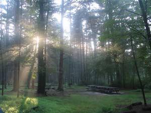 Ánh sáng mặt trời làm sạch khí quyển trái đất