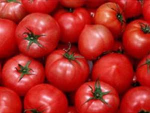 Ăn nhiều cà chua có khả năng tăng miễn dịch