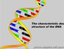 ADN không nói dối, nhưng có thể nói sai