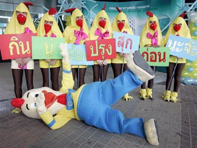 Thái Lan tuyên truyền về cúm gia cầm tận nhà