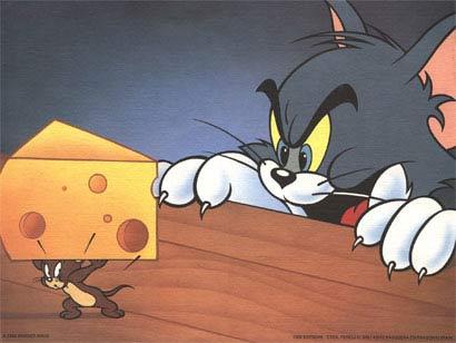 Chuột Jerry không hề thích pho mát
