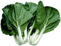 Phát hiện hợp chất chống ung thư kháng thuốc trong rau cải