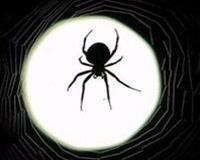 Tơ nhện chữa thương
