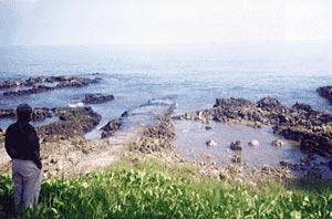 Cảnh báo tình trạng ô nhiễm biển