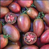 Cà chua màu tím sắp ra đời