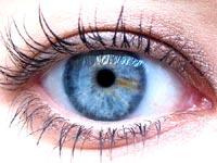 Đàn ông mắt xanh thích phụ nữ mắt xanh