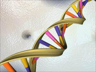 ADN - nhà thám tử tài ba