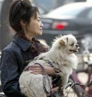 Bắc Kinh hạn chế nuôi chó