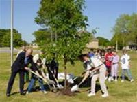 LHQ phát động chiến dịch trồng 1 tỷ cây xanh