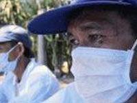 Indonesia: Thêm 2 người nhiễm cúm gia cầm