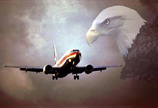 """Bảo bối"" giúp máy bay tránh chim"