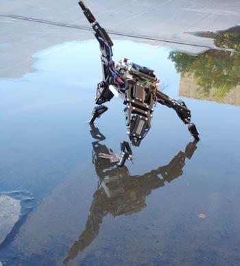 Robot tự phán đoán
