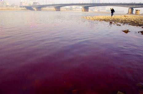 Trung Quốc: sông Hoàng Hà đổi màu vì ô nhiễm