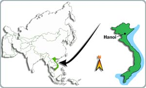 Hai tháng 10 và 11: Hà Nội có nền nhiệt độ cao nhất trong 80 năm qua