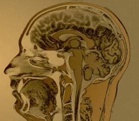 Thương hiệu mạnh dễ bám sâu vào não hơn