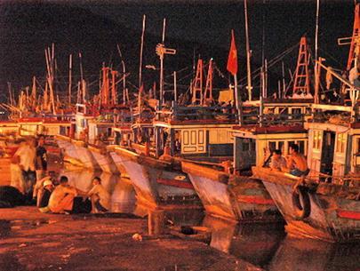 Gần 1.000 tàu thuyền tập trung tránh bão ở cảng Cà Ná, Ninh Thuận (ảnh chụp lúc 21g30 tối 3-12)