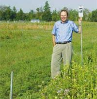 Trồng nhiều loại cỏ để chế tạo nhiên liệu sinh học
