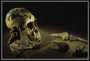 Đứa trẻ 3 triệu năm tuổi