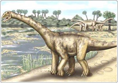 Phát hiện hóa thạch khủng long khổng lồ tại Tây Ban Nha