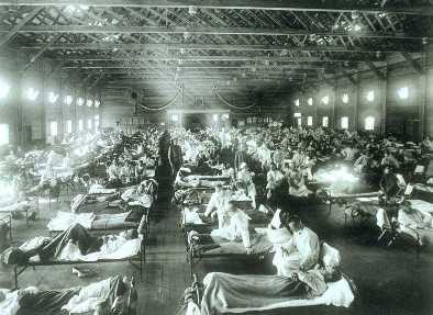Một dịch cúm mới sẽ gây tử vong 81 triệu người trên thế giới?