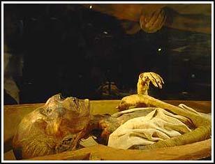 Xác ướp tại Viện bảo tàng Ai Cập.
