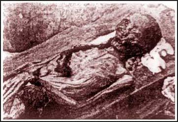 Xác ướp khai quật ở Nhật Tân (Hà Nội) sau 10 ngày lộ thiên ngấm nước vẫn còn nguyên vẹn.
