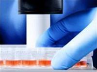 Thêm một nhà nghiên cứu bị phát hiện làm giả nghiên cứu tế bào mầm