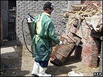 H5N1 biến dạng ở Ai Cập