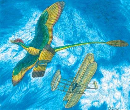 Khủng long cổ đại bay bằng 4 cánh