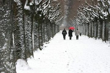 Bão tuyết hoành hành tại châu Âu