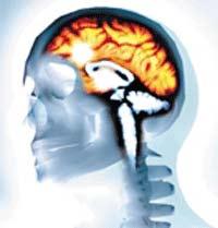 Vùng trong não gây nghiện thuốc lá