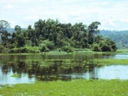 Bảo tồn và phát triển bền vững vùng đất ngập nước
