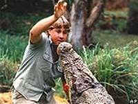 """Công chiếu bộ phim cuối cùng của """"người săn cá sấu"""""""