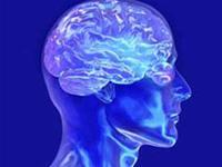 """Tìm ra """"điểm nhân ái"""" trong não"""