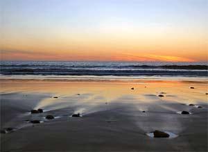 Tại sao biển có mùi dễ chịu?