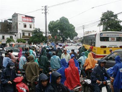 Việt Nam có nguy cơ mất 12,2% diện tích đất sinh sống