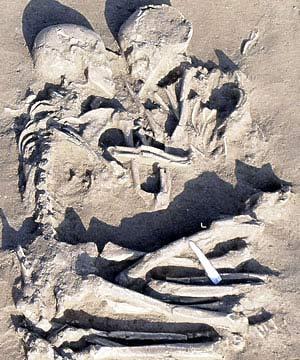 Cái ôm kéo dài 5.000 năm