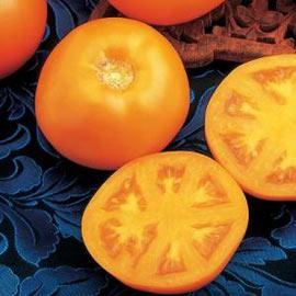 Liệu cà chua quýt có phải là loại tốt nhất?