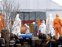 Hàn Quốc lại phát hiện cúm gia cầm