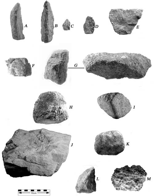 Loài tinh tinh đã biết dùng công cụ đá cách đây 4.300 năm