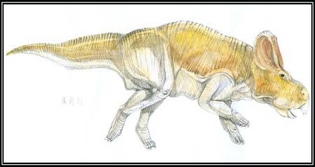 Protoceratop