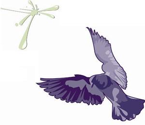 Điều khiển chim bồ câu từ xa