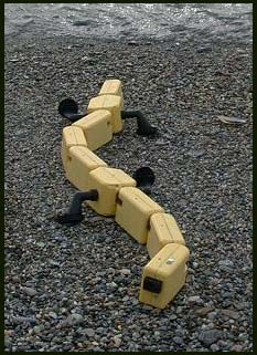 Robot kỳ giông giúp tìm hiểu về động vật luỡng cư