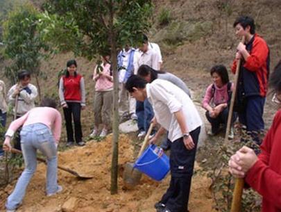 Trung Quốc: tăng diện tích rừng trồng