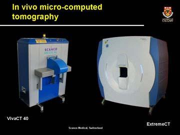 Nghiên cứu tổ tiên loài người bằng máy chụp cắt lớp