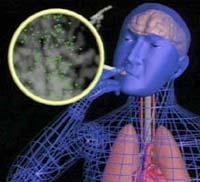 Nghiên cứu chứng minh vai trò của nicotine trong việc hút thuốc lá