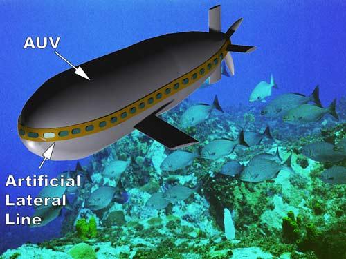 Tàu ngầm kiểu cá